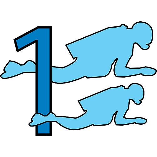 Logo DL1